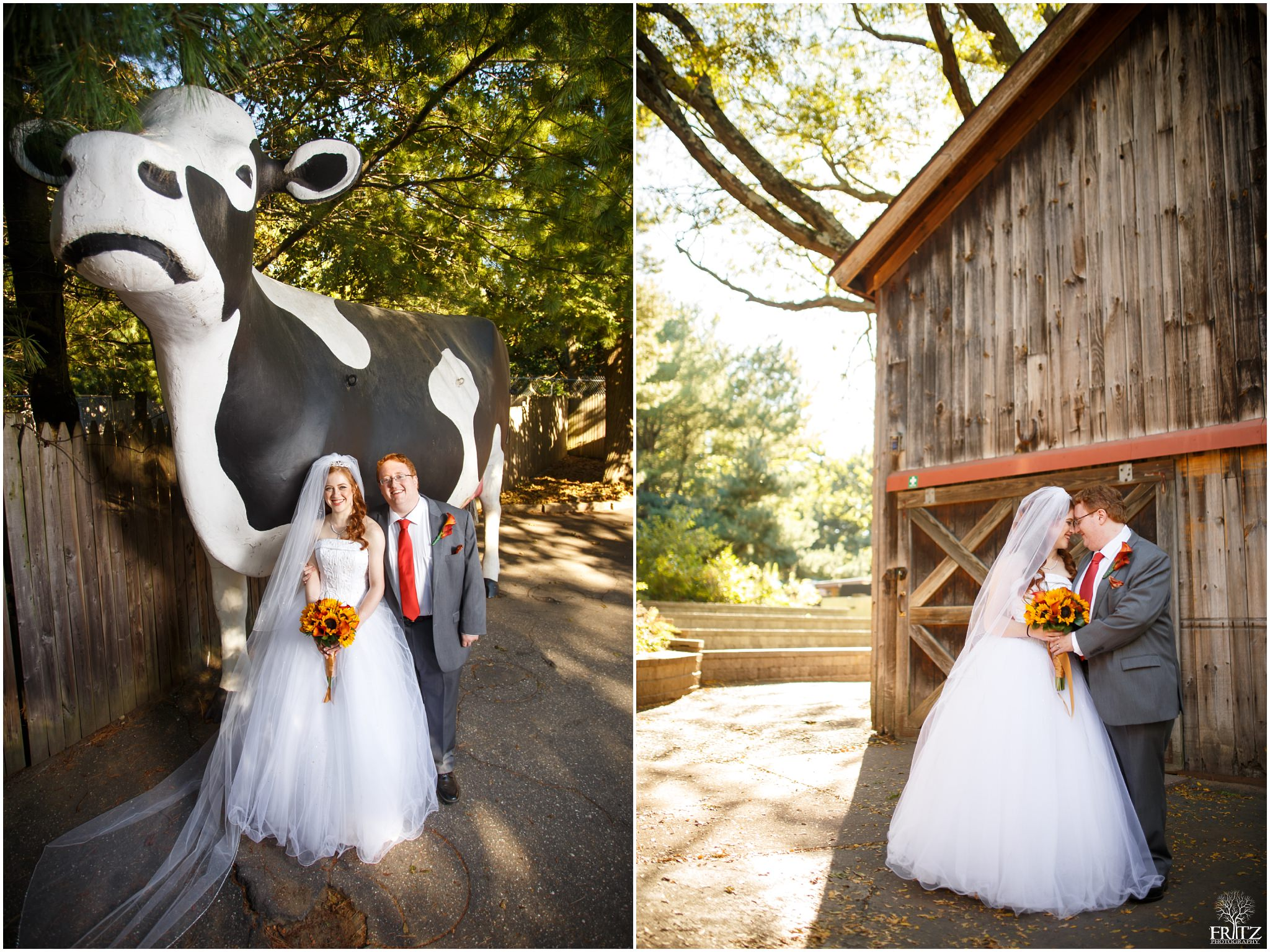 beardsley zoo wedding